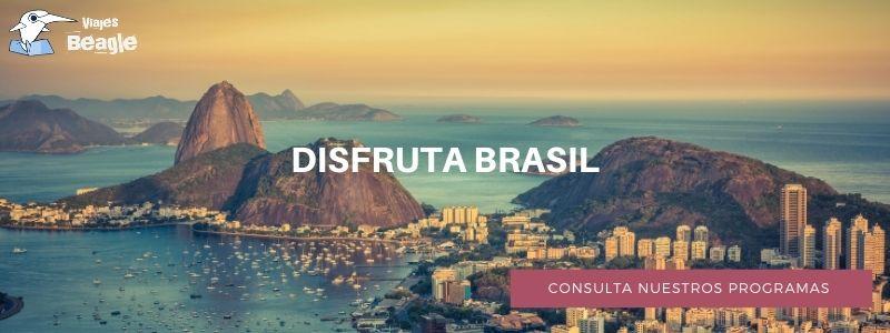 banner descarga Brasil