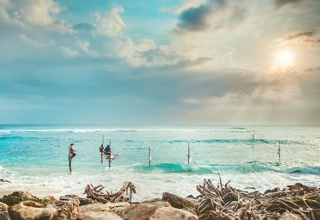 El tiempo en Sri Lanka: cuándo viajar para una aventura inigualable