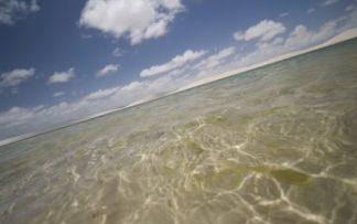 Playa de brasil