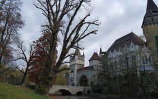 Selva Negra castillo