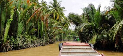 Barco tropical