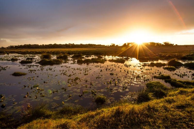 iSimangaliso Wetland Park