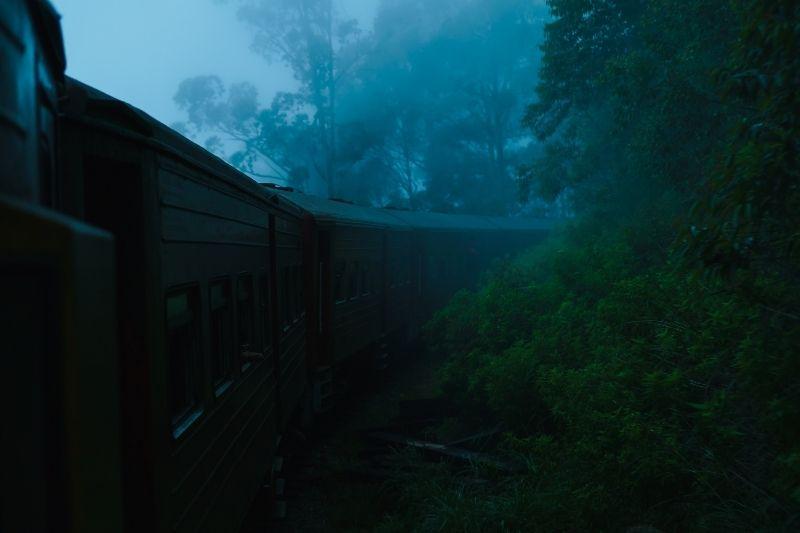 Tren por el bosque de Sri Lanka