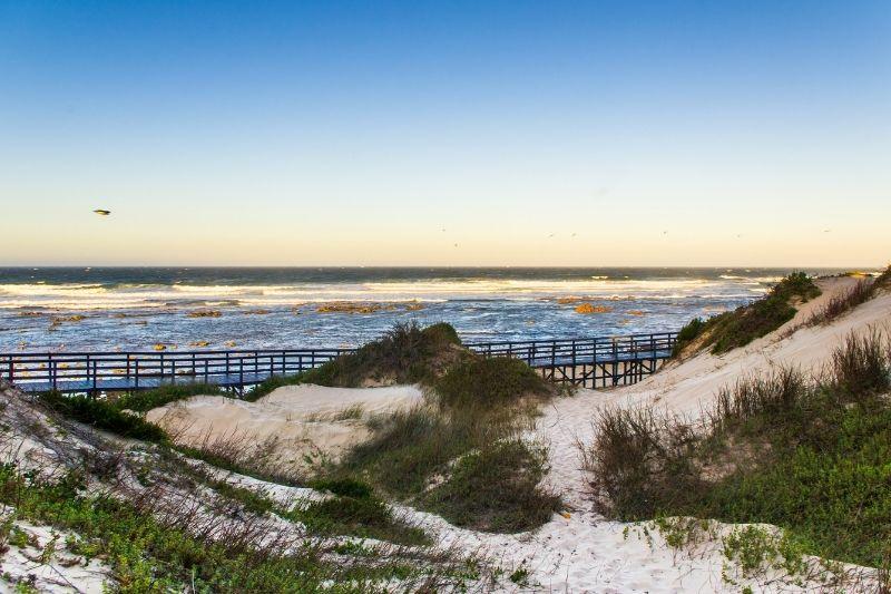 Playa de Port Elizabeth