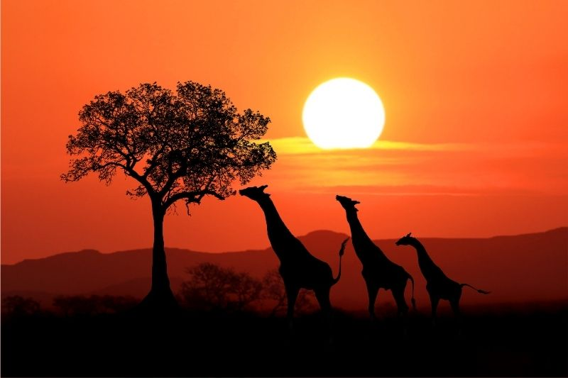 Turismo en Sudáfrica