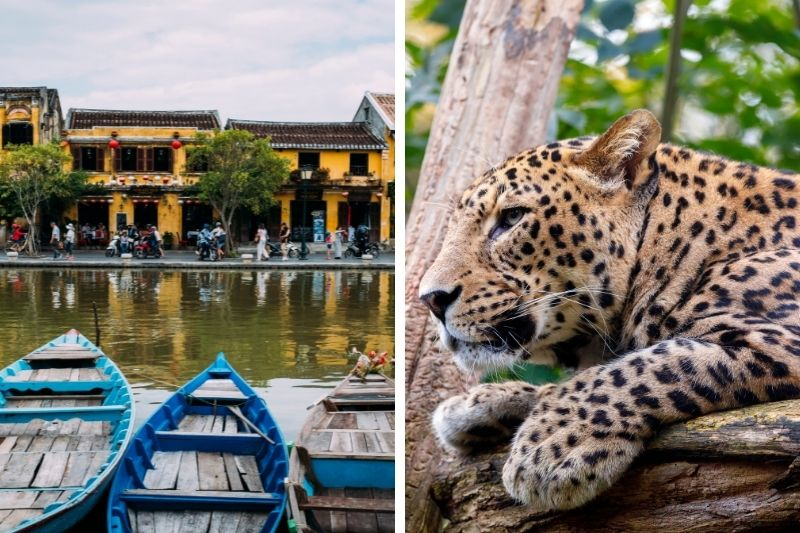 Vietnam o Sri Lanka