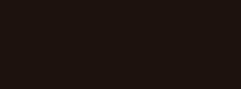Logo Locos por Viajar